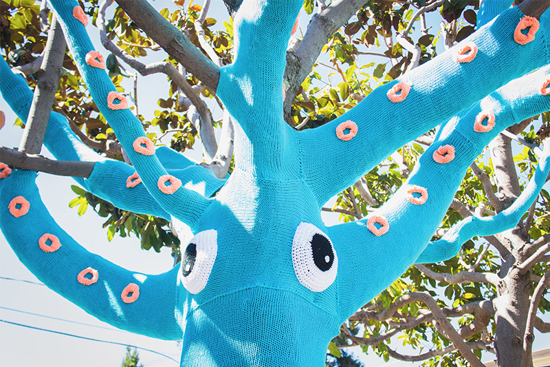 Tree wrapping giant squid