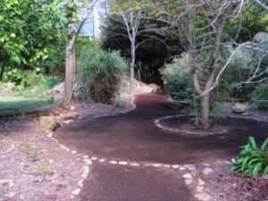 Spiral at Karri Loop